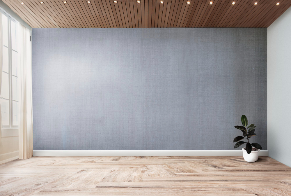 plant-in-an-empty-room-with-gray-wall